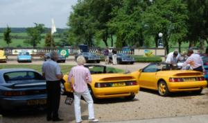 Summer Lotus Drive-in and Luncheon 2010