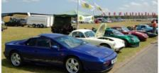 Just a few of the Historic Lotus Club cars at Snetterton